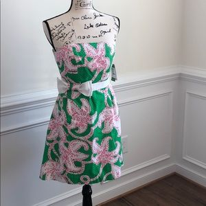 NEW Lilly Pulitzer Amberly Dress